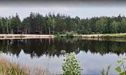 Участок с сосновым лесом и собственным родниковым озером. Киев