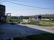 Продам ферму, животноводческий комплекс, готовый бинес Николаев