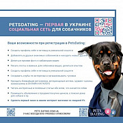 Pets Dating — первая в Украине соц.сеть для хозяев собак доставка из г.Киев