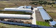 Теплично производственный комплекс 7500м2 30км от Киева Киев