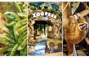 Зоопарк EKZOLAND Киев