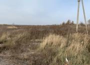 Участок 3.6 гектара (земли промышленности), с. Новые Петровцы Вышгород