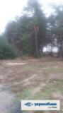 Продам землю комерційного призначення, Пятихатки Кременчуг