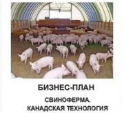 Бизнес-план. Канадская, датская технологии содержания свиней доставка из г.Житомир